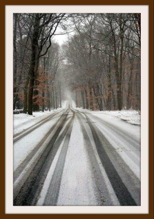 Katherine Hooper -- Westport  snow