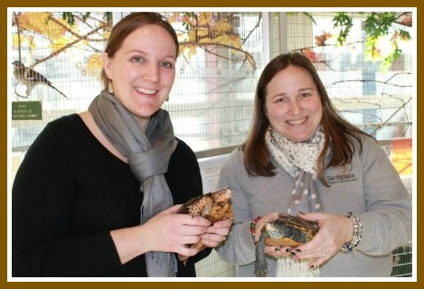 Meaghan George of the Family Y (left) and Becky Newman of Earthplace hold a terrapin and turtle. (Camp Mahackeno's longtime mascot is a snapping turtle.