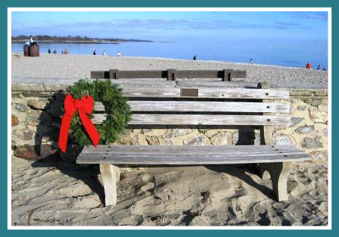 David White's original bench by the cannon, just before Christmas 2011.