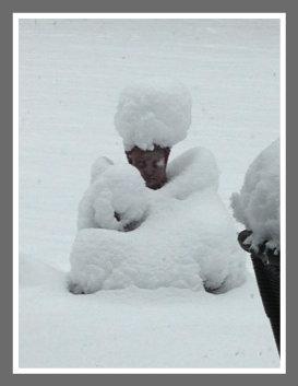 Westport snow 2012 by Diane Lowman
