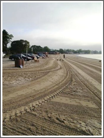 Compo Beach cleanup