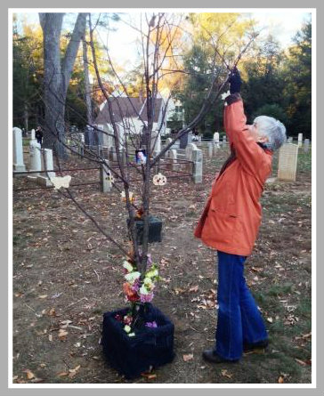 "Hanging an object in the ""memory grove."""
