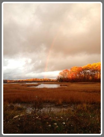 Mill Pond rainbow - Lauri Friedland