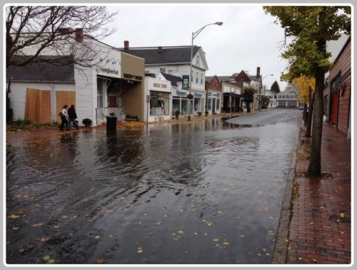 Mitigating frequent flooding is an important concern for the Downtown Steering Committee.