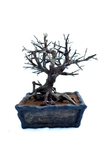 """Tree Lamp,"" bronze sculpture, by  Natalie Oikawa."