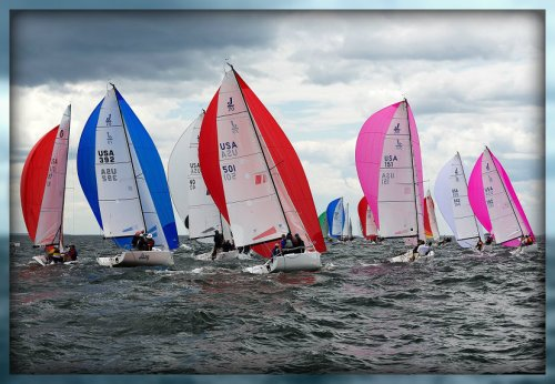 J70s -- the future of sailing. (Photo/copyright Barry Hyman Photography)