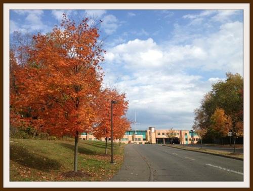 Staples HS - autumn
