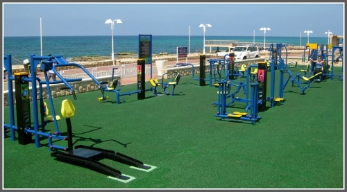 A fitlot park by the sea in Israel...