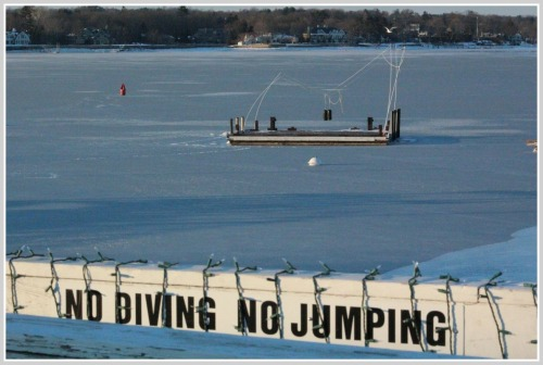 """No Diving No Jumping."" No kidding. (Photos/Gene Borio)"