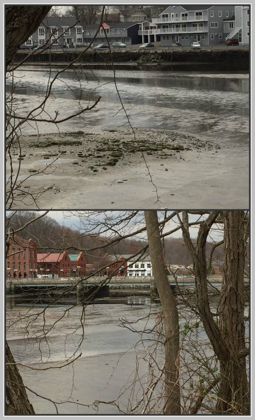 Saugatuck River collage