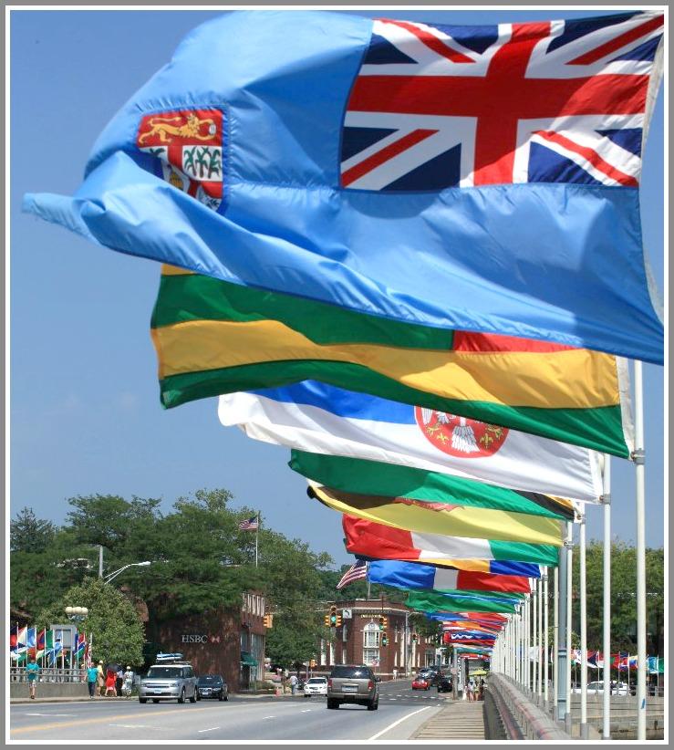 flag day june 2015
