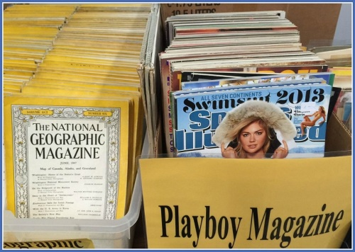 ... or magazines. (Photo/Lynn U. Miller)