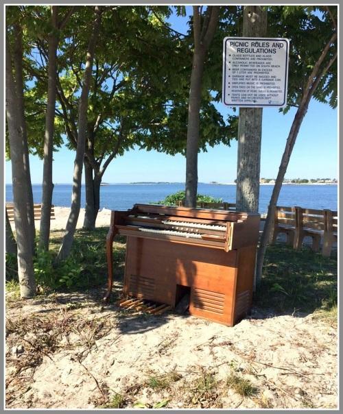 Organ at beach