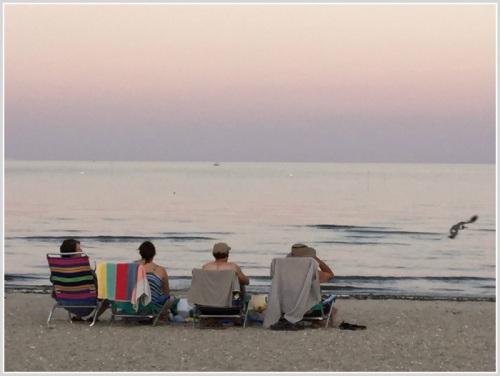 Comp Beach - August 16, 2015 - 2