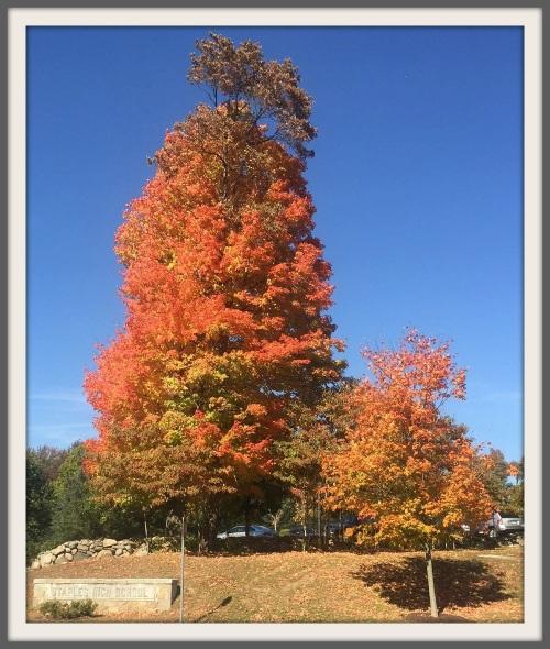Staples High School in fall - entryway