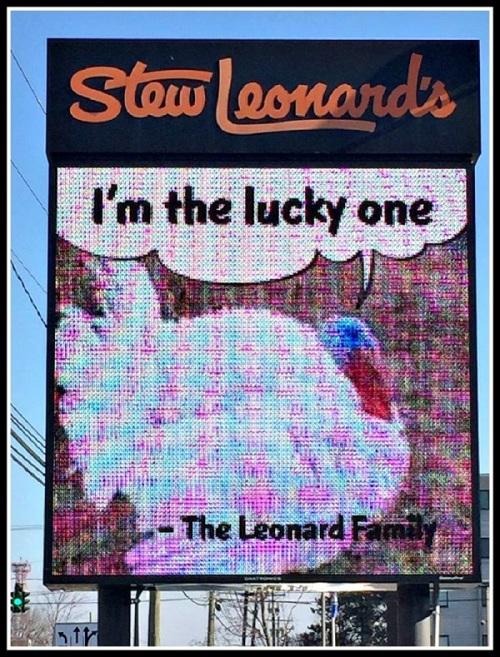 Stew Leonard's 1