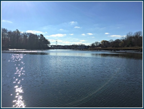 Saugatuck River paddle - Jamie Lindenbaum