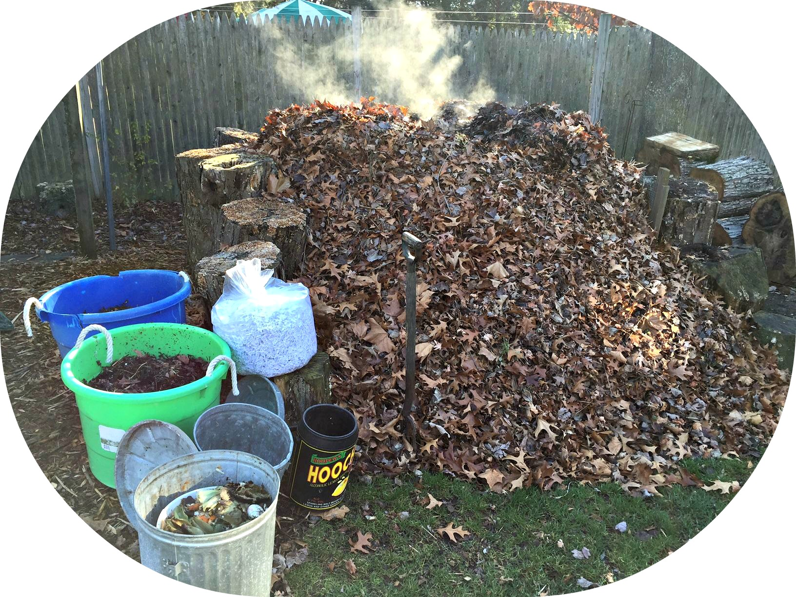 my pile a year in the life of a backyard compost heap u201d 06880