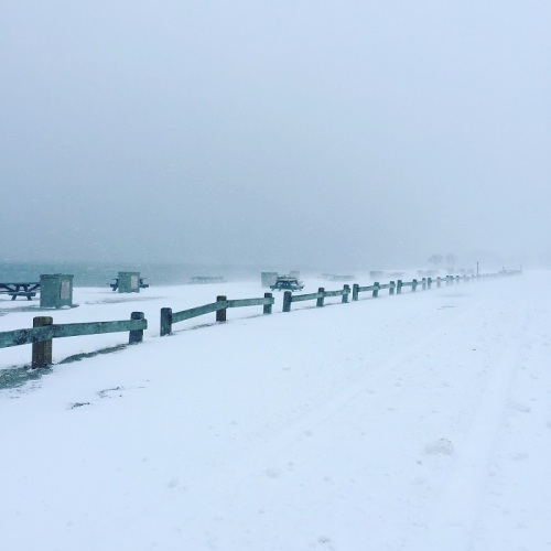 No picnics today on South Beach! (Photo/Briana Walegir)