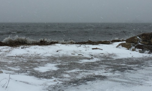 High tide, as viewed from Harbor Road. (Photo/Bart Shuldman)