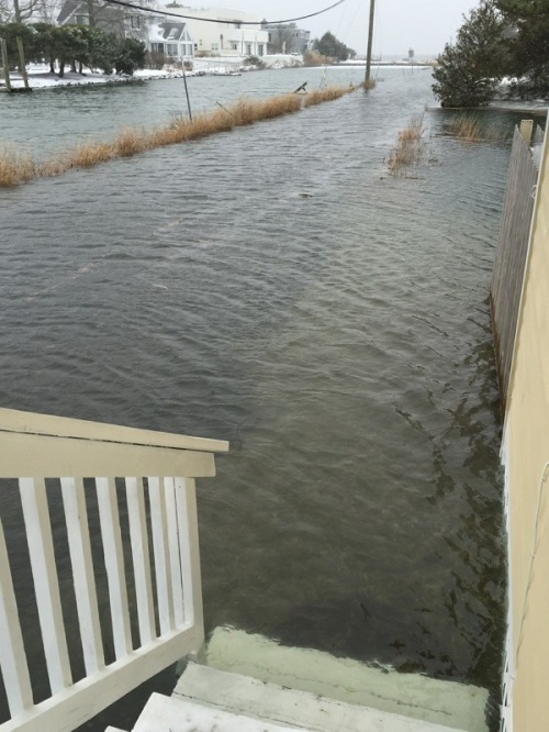 High tide on Saugatuck Shores this morning does not bode well for tonight's expected even-higher tide. (Photo/Gene Borio)