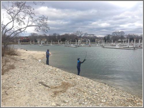 Compo Beach boat basin - January 2, 2016 - Steve Axthelm