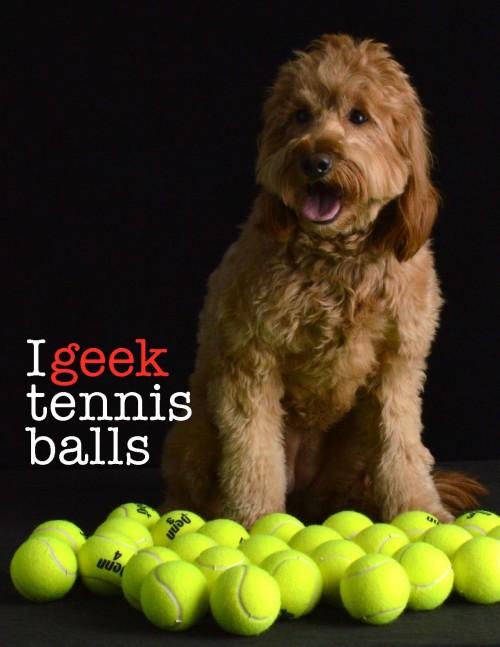 Geek - tennis balls