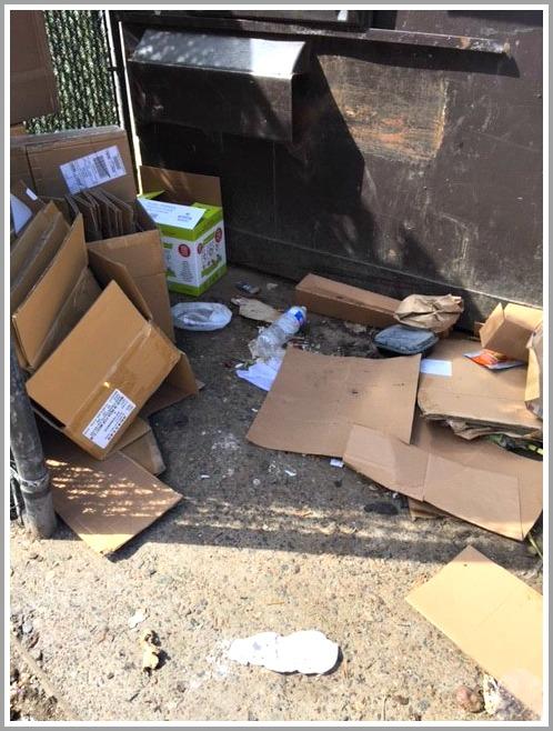 parker-harding-dumpster