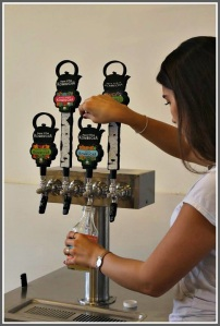 Aishah Avdiu, with her kombucha taps. (Photo/Quincy Cuthbertson for Inklings)