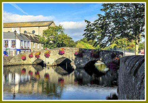 Westport, Ireland's version of the William Cribari/Bridge Street Bridge.