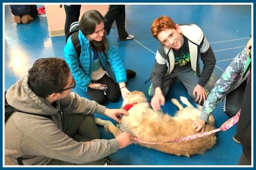 Petting dogs has been shown to release endorphins in the brain, leading to relaxed feelings.